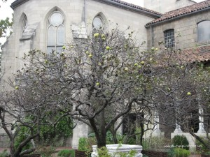 Cloisters in the age of Dante Alighieri