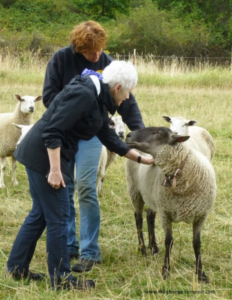 Elissa and Susie Petting Sheep