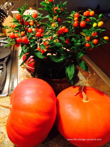 Decorative cherry and pumpkin